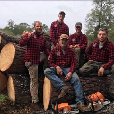 Beaver tree crew